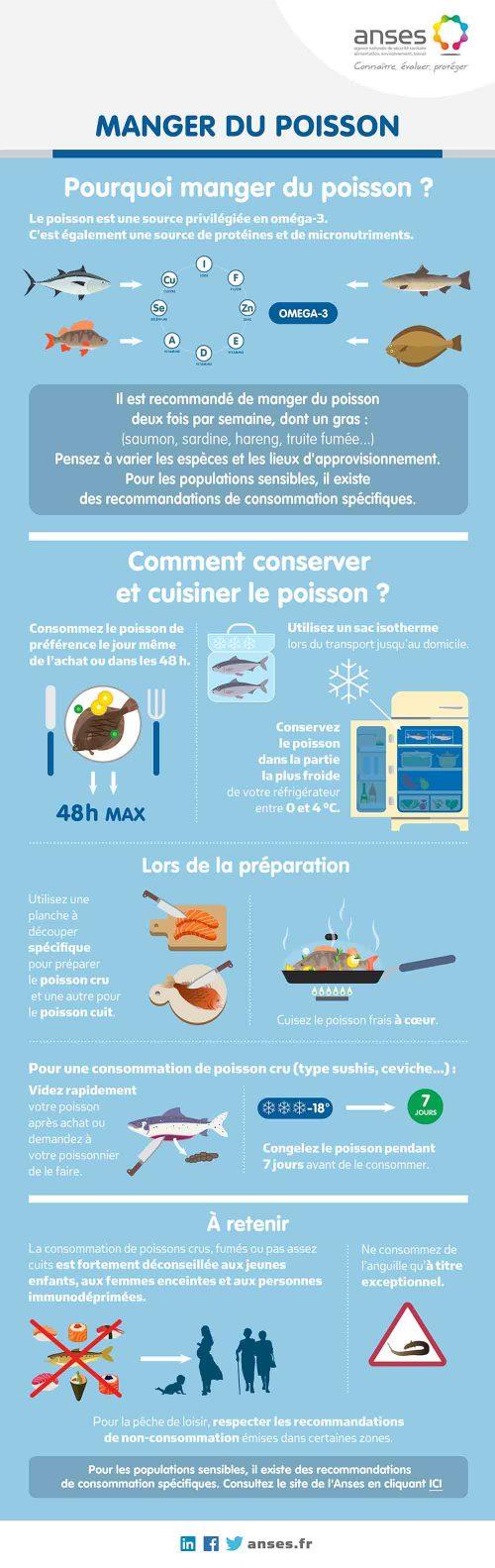 infographie-poisson